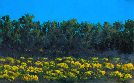 Comanche Creek and Rabbit Bush 16x24.jpg