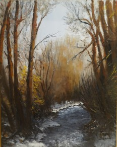 Winter Light, Cottonwood Creek.jpg