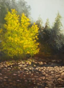 Early Fall Bear Creek.jpg