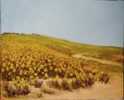 September Sunflowers..jpg